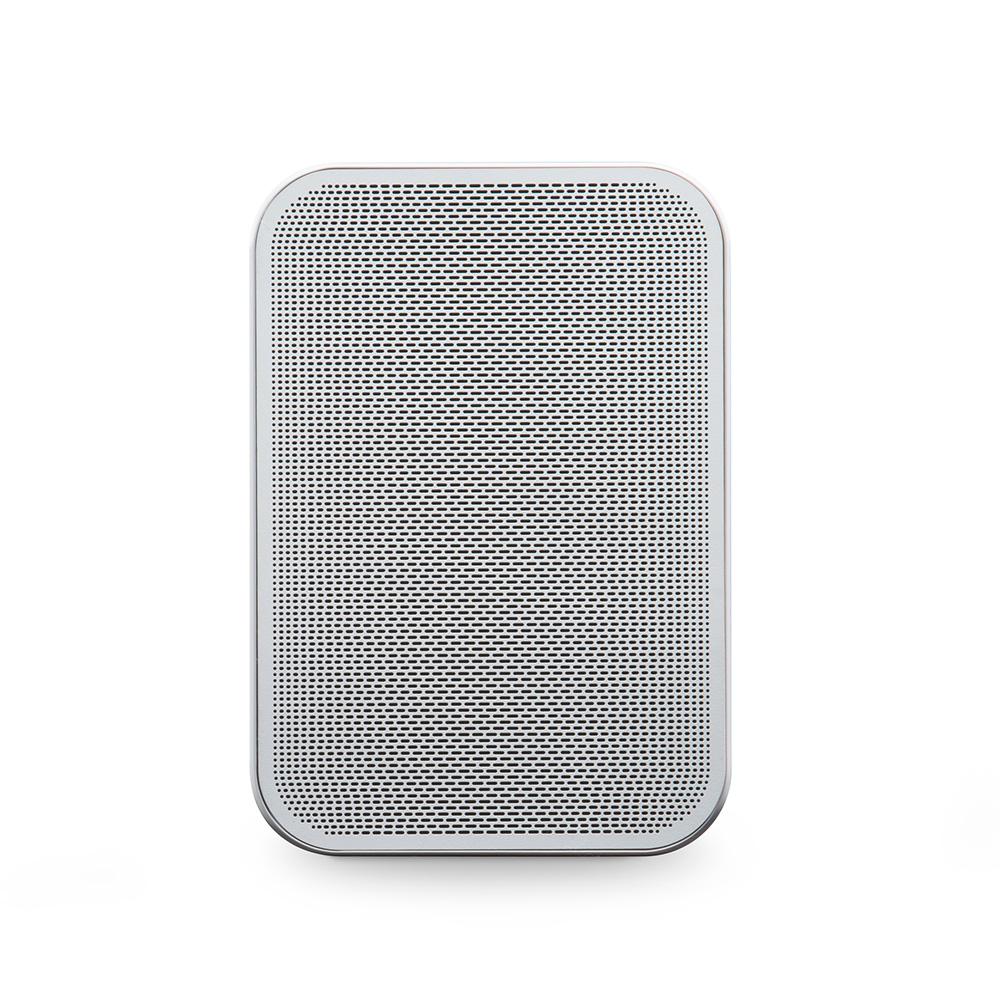 streaming speaker - Flex 2i front