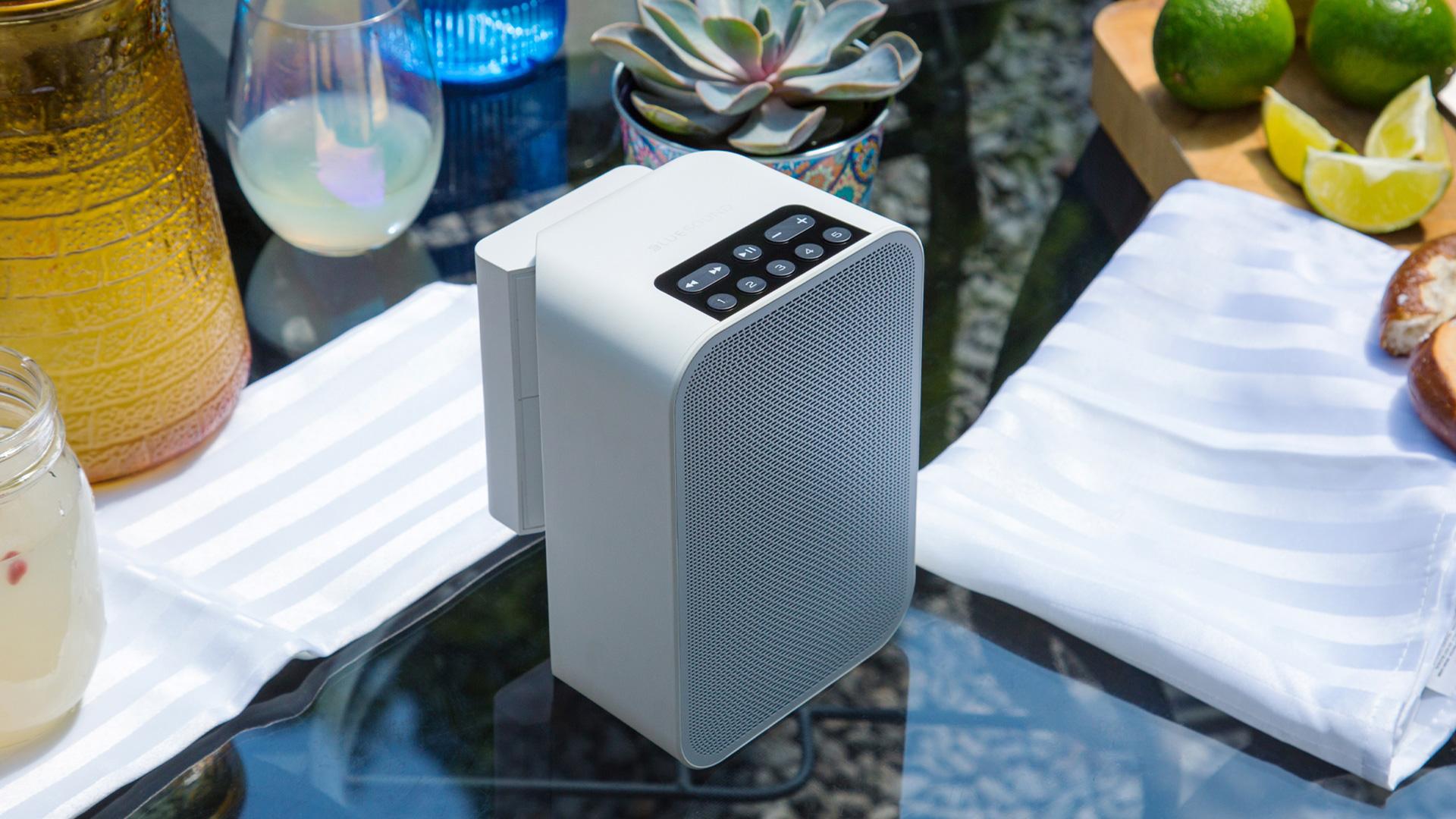 Flex wireless speaker with battery