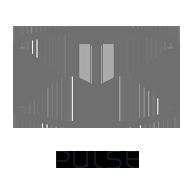 PULSE wireless speaker